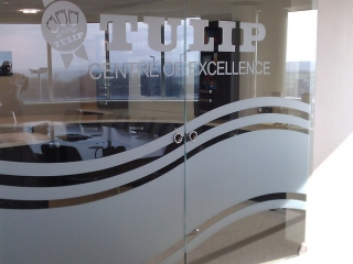 glass doors with etching