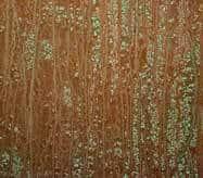 Copper Patina Door Finish